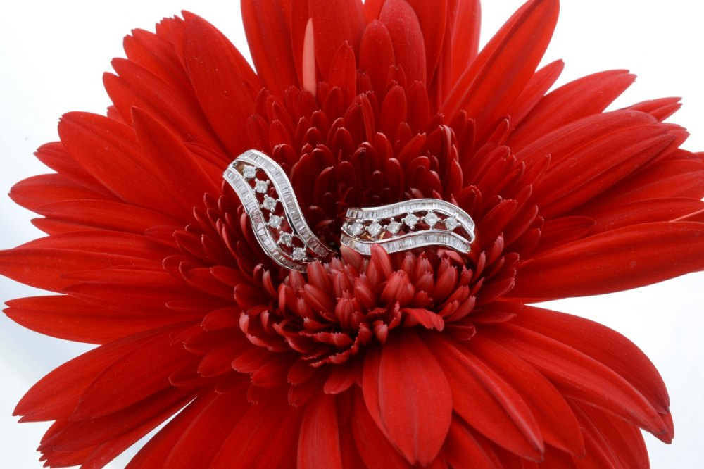 Product Jewellery Photography in Delhi-1